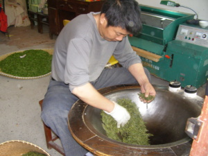 A tea picker pan frying the Lung Ching.
